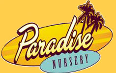 Paradise Nursery, Kansas City, Missouri